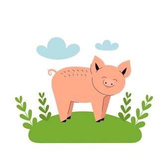 Le cochon rose mignon se dresse dans un pré. animaux de ferme de dessin animé, agriculture, rustique. illustration vectorielle simple à plat sur fond blanc avec des nuages bleus et de l'herbe verte.