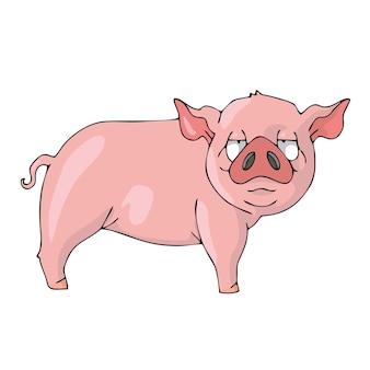 Cochon sur vecteur de dessin animé mignon fond blanc