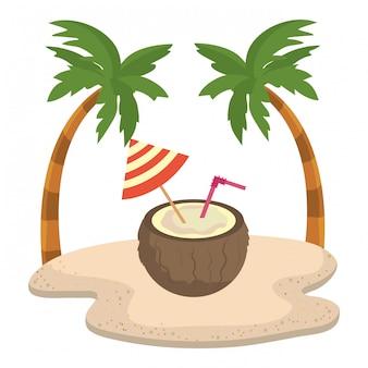 Cocktail de palmiers et noix de coco