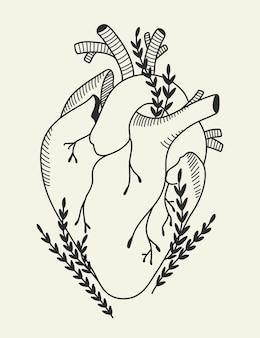 Coeur humain anatomique en fleurs