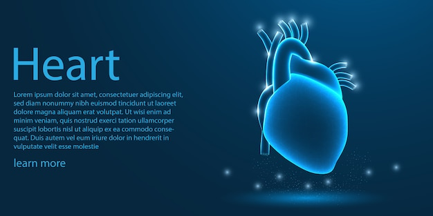 Cœur humain médical, concept low poly.