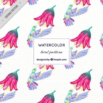 Colibri aquarelle avec un motif de fleur
