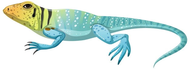 Collard lizard en style cartoon isolé sur fond blanc