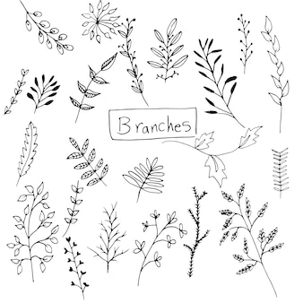 La collecte des branches dessinés à la main