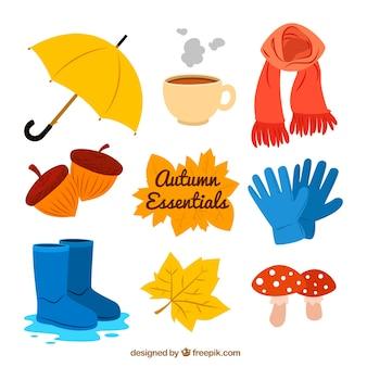 La collecte des éléments essentiels de l'automne