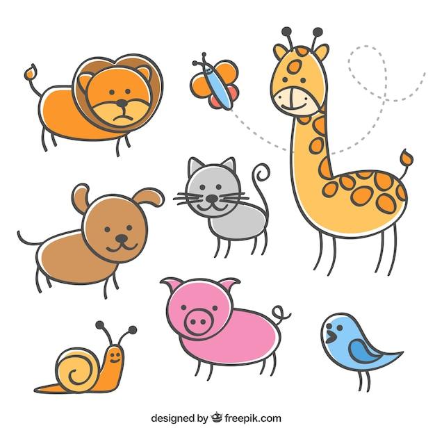 La collecte des illustrations d'animaux
