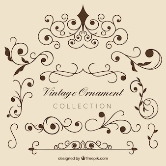 Collectio élégant ornement vintage
