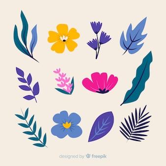 Collectio élément floral