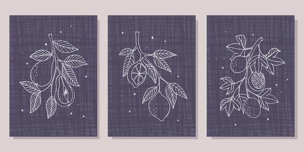 Collection d'affiches avec différents fruits branche avec poires branche avec citrons branche avec pass