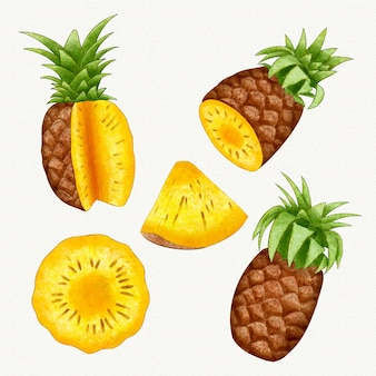 Collection d'ananas