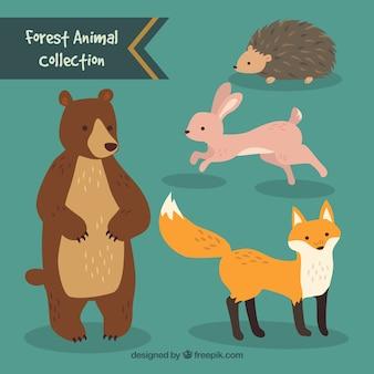 Collection animale tirée de la forêt mignonne main