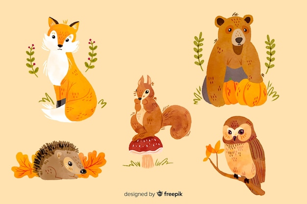 Collection d'animaux d'automne aquarelles