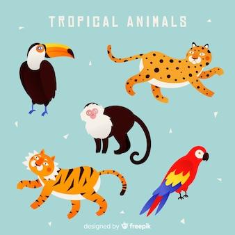 Collection d'animaux exotiques dessinés à la main