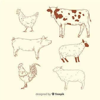 Collection d'animaux de ferme dans un style dessiné à la main