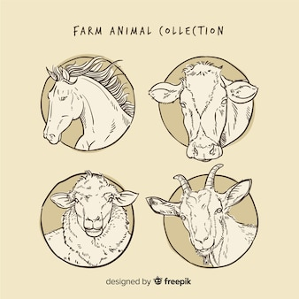 Collection d'animaux de ferme dans un style dessiné à la main