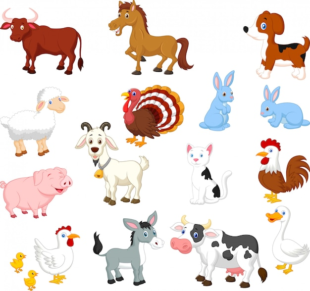 Collection d'animaux de ferme sur fond blanc