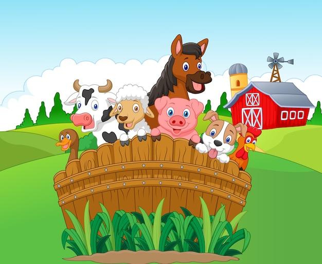 Collection animaux de la ferme