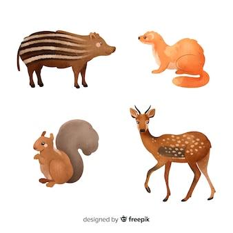 Collection d'animaux de la forêt à l'aquarelle