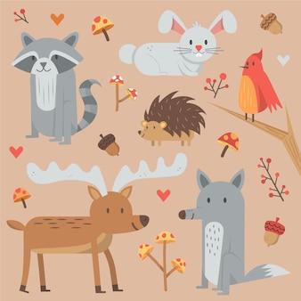 Collection d'animaux de forêt d'automne dessinés à la main