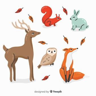 Collection d'animaux de la forêt dessinés à la main