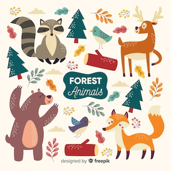 Collection d'animaux de la forêt dessinés à la main
