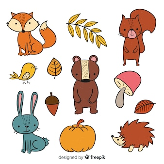 Collection d'animaux de la forêt mignons dessinés à la main