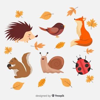 Collection d'animaux de la forêt plat automne