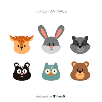 Collection d'animaux de la forêt