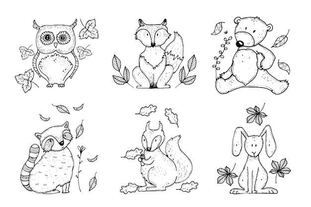 Collection d'animaux de fost automne dessinés à la main