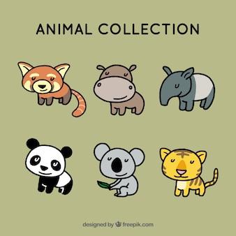 Collection d'animaux heureux