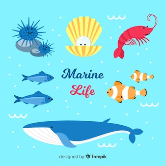 Collection d'animaux marins dessinés à la main