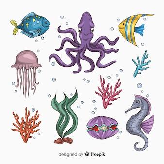Collection d'animaux de mer mignons dessinés à la main