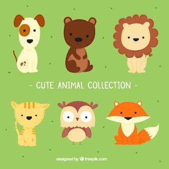 Collection d'animaux mignons avec un style enfantin