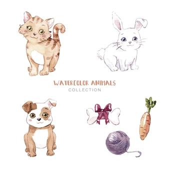 Collection d'animaux mignons