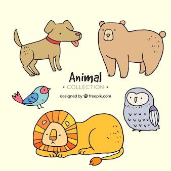 Collection d'animaux avec style dessiné à la main