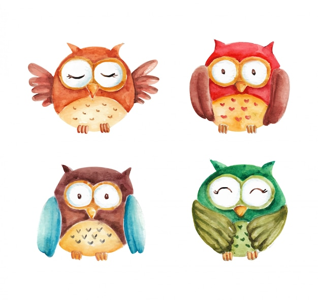 Collection aquarelle colorée de hibou