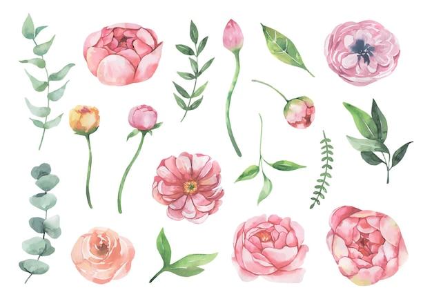 Collection aquarelle de fleurs et de feuilles bleues