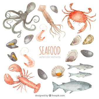 Collection aquarelle de fruits de mer