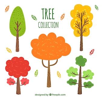Collection d'arbres dans un style dessiné à la main
