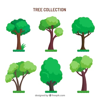 Collection d'arbres dans un style dessiné à la main