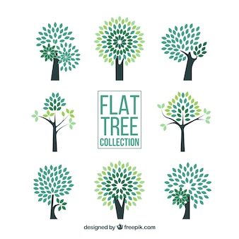 Collection d'arbres dans le style plat