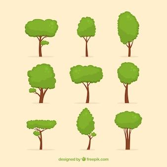 Collection d'arbres dans le style plat