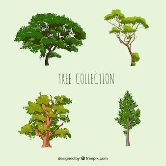 Collection d'arbres dans un style réaliste