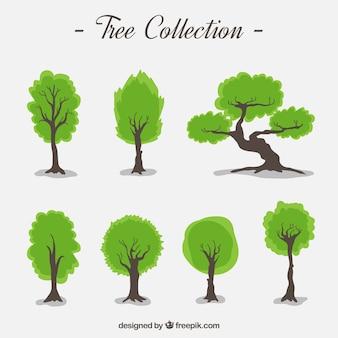 Collection d'arbres dessinés à la main