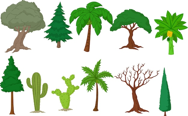 Collection d'arbres divers