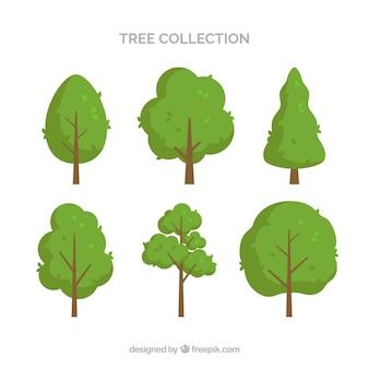 Collection d'arbres de six