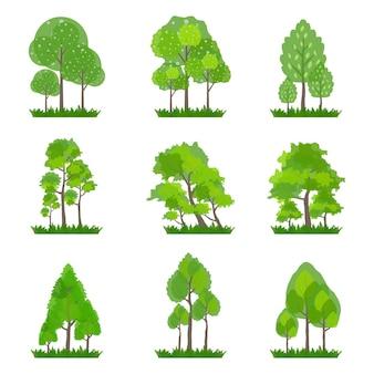 Collection d'arbres verts isolés sur blanc