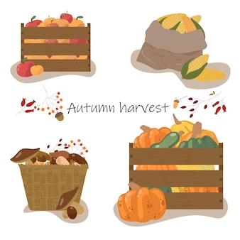 Collection d'automne d'éléments pour votre conception avec des citrouilles, des feuilles, des légumes, du maïs. concept de récolte d'automne.