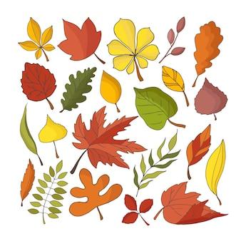 Collection d'automne de feuilles