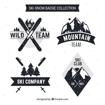 Collection de badge de ski